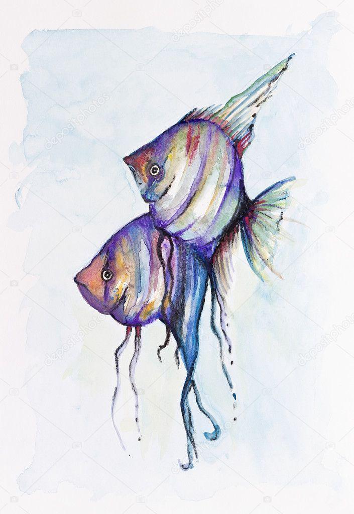 Mar rosso pesci farfalla foto stock vilaxlt 27014521 for Pesce rosso butterfly