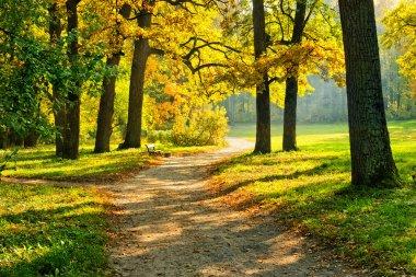 Warm autumn