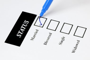 Form showing marital status with check - boxes and pen stock vector