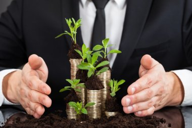 Businessman with Coins and saplings