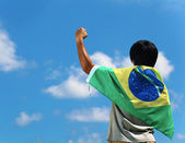 Fotografie Brazil supporter hand up