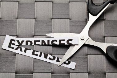 Expenses cut