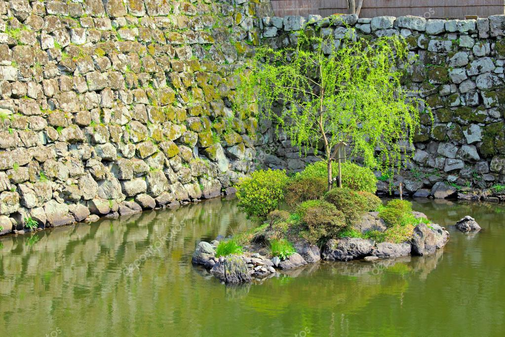 Japanese garden with lake