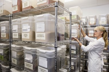 employee in spice storage room