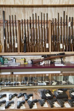 Weapons displayed in gun shop