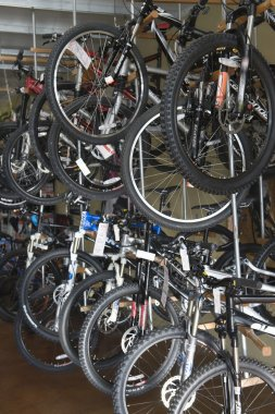 Bicycles in bike shop
