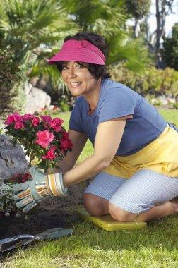 Woman Planting Flower Plant