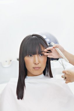 Woman having her hair cut by stylist