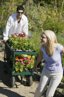 Couple pulling cart of flowers
