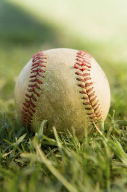 baseball game ball on grass