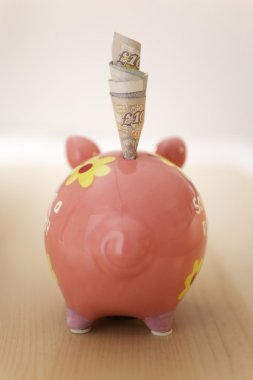 Banknotes and piggy bank