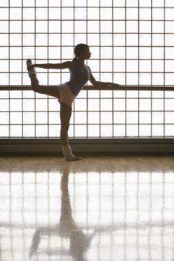 Ballerina Practicing Move