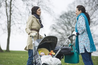 Mothers in park with babies in strollers