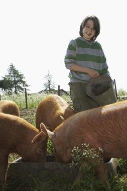 Boy Feeding Pigs