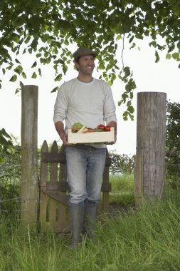 Farmer Carrying Box