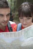 Fotografie Couple looking map