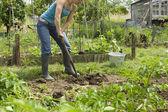Photo adult Woman gardening