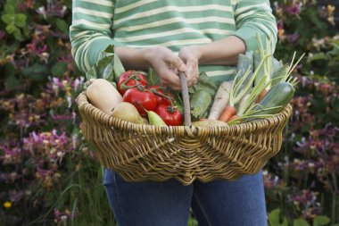 Woman holding fruits and vegetables