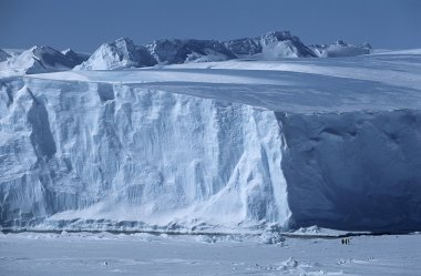 Iceberg with Emperor Penguins