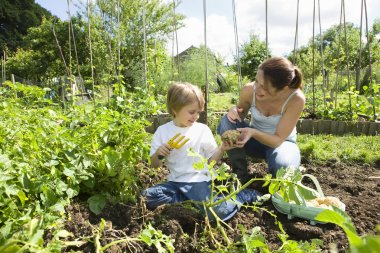 Mother with son in vegetable garden
