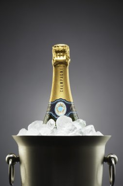 Champagne bottle in ice bucket