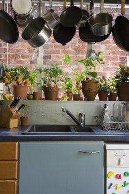 Domestic kitchen interior