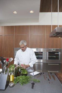 Mid- adult chef washing leaf vegetables