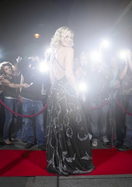 Woman in gown posing for paparazzi