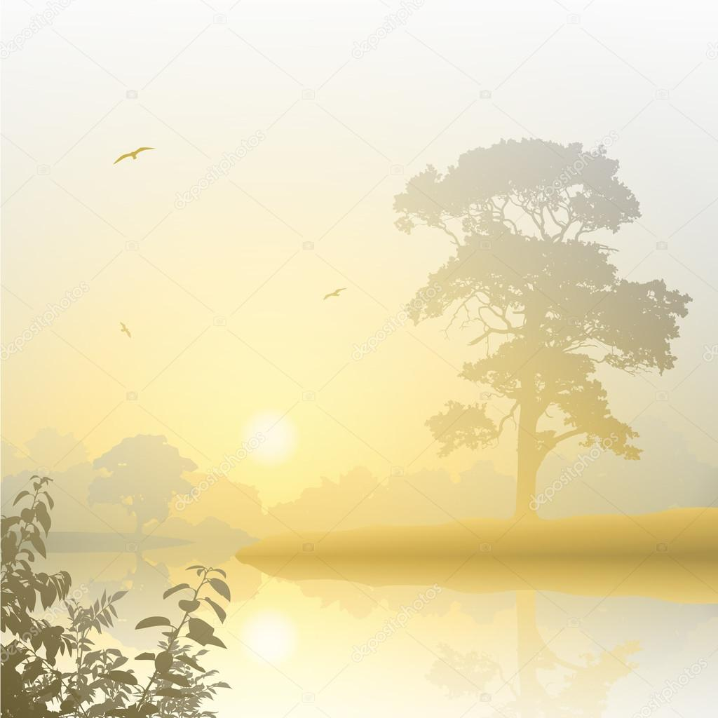 Misty Landscape