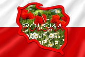 Photo map of Poland on white and red flag