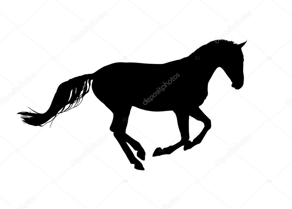 Horse Symbol Vector Stock Vector Hydognik 47070547