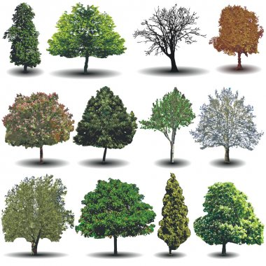 different vector trees