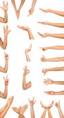 Fotografia collage di donna le mani su sfondi bianchi