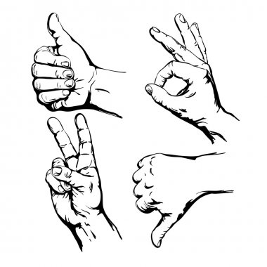 Set of Four Hands with Thumb Finger Up, Victory and O.K. clip art vector