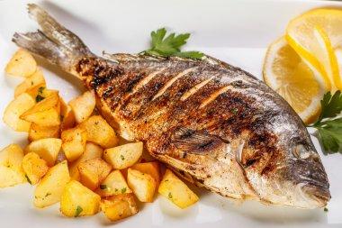 Sea bream fish with potato on white plate close-up stock vector
