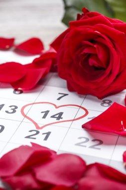 Calendar date 14th of February