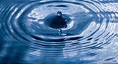 kék vízcsepp és a splash.