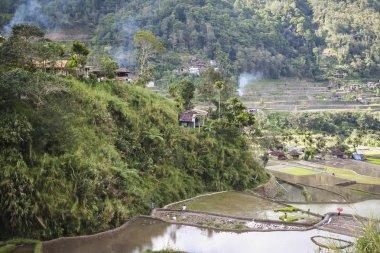 Banaue rice terraces luzon philippines