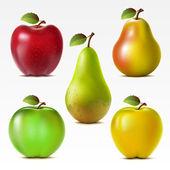 Souprava ovoce