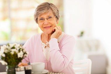 Elegant senior woman having tea stock vector