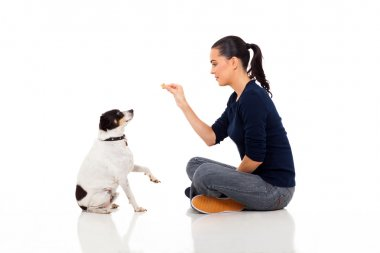 modern woman training a dog