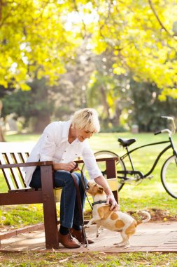 middle aged woman playing with pet dog at the park