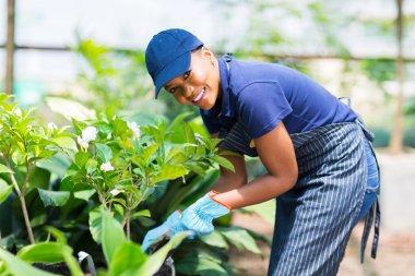 Afro american woman working in nursery garden