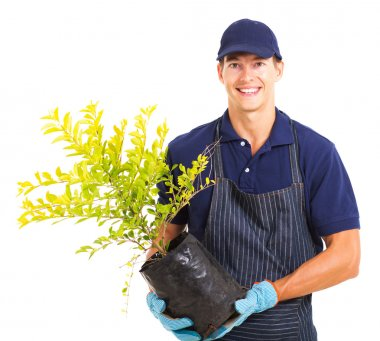 Young gardener holding a plant