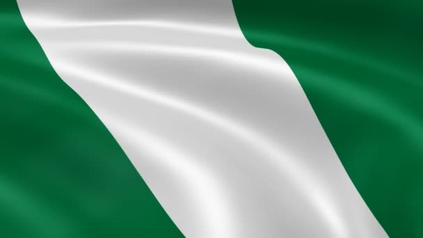 Nigerian flag in the wind