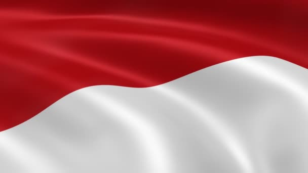 Indonesian flag in the wind.