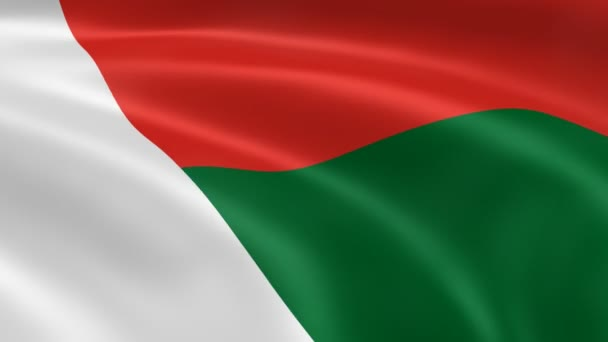 Malagasy flag in the wind.