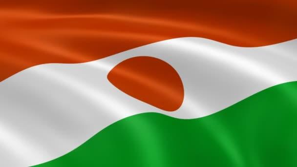 Nigerien flag in the wind.