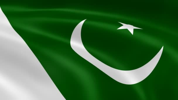 Pakistani flag in the wind.