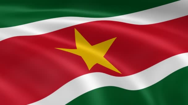 Surinamese flag in the wind.